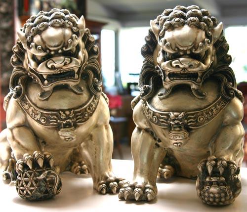 Chinese fu dog - photo#8